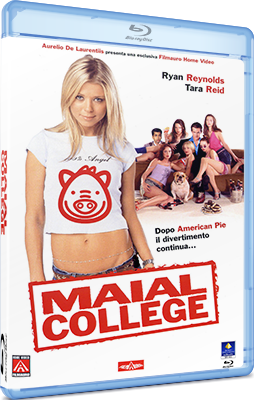 Maial college (2002) .mkv ITA-ENG 1080P EXTENDED AC3 5.1 Sub
